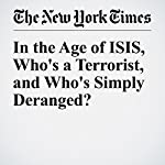 In the Age of ISIS, Who's a Terrorist, and Who's Simply Deranged? | Mark Mazzetti,Eric Schmitt
