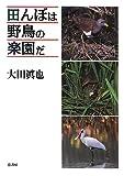 田んぼは野鳥の楽園だ