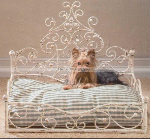 Iron Dog Bed 6194 front