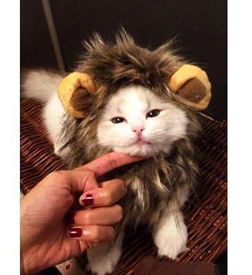 Dogloveit Pet Costume Lion Mane Wig for Dog Cat Halloween Dress up with Ears
