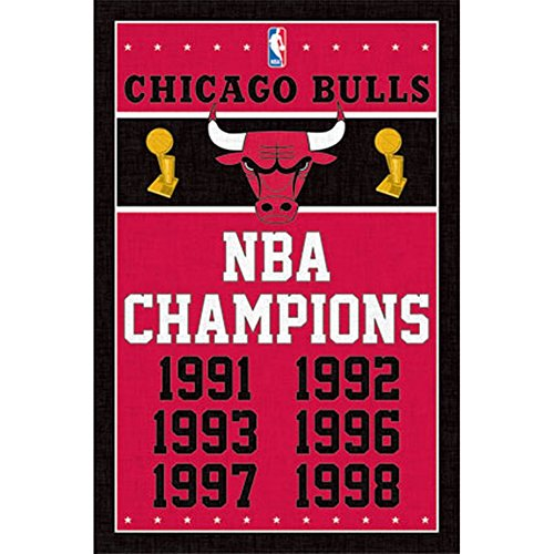 Chicago Bulls NBA Champions
