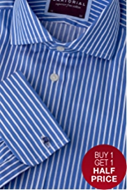 2in Longer Sartorial Pure Cotton Striped Shirt