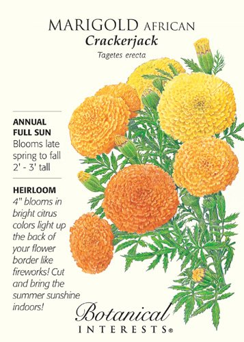 Crackerjack African Marigold Seeds - 750 mg