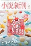 小説新潮 2013年 06月号 [雑誌]