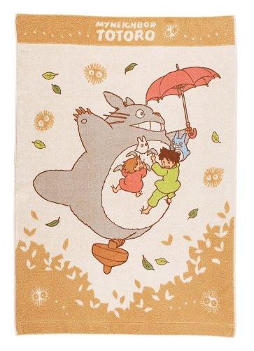 Totoro walk NAP gasket 532018
