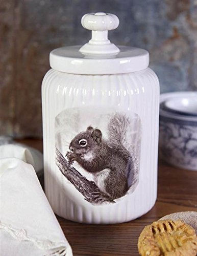 Cookie Jar Little Nibbler with Bright-eyed and Bushy-tailed Squirrel Print, White, Ideal for Kitchen