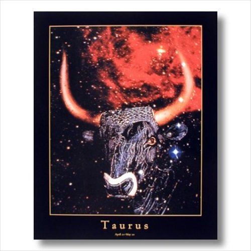 Taurus-Bull-Horn-Zodiac-Sign-Astrology-Wall-Picture-16x20-Art-Print