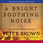 A Bright Soothing Noise | Peter Brown