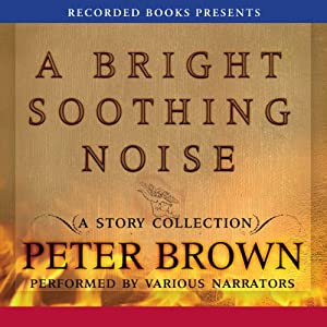 A Bright Soothing Noise | [Peter Brown]