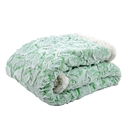 Tadpoles Cut Fur Baby Blanket with Sherpa Backing, Green