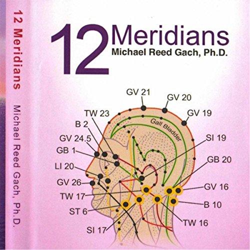 12-meridians-guided-visualizations-acu-yoga-2-instructional-cds