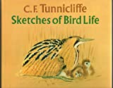 C. F. Tunnicliffe: Sketches of Bird Life (082304856X) by Robert Gillmor