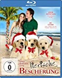 3 Holiday Tails ( Three Holiday Tails ) ( A Golden Christmas 2: The Second Tail ) (Blu-Ray)