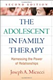 img - for The Adolescent in Family Therapy, Second Edition: Harnessing the Power of Relationships (The Guilford Family Therapy Series) book / textbook / text book