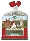 Oxbow Western Timothy Hay - 9 lbs