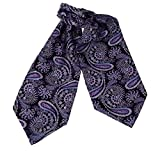 ERA7B02 Comfort Gift Silk Mens Ascot Patterned Young Gentlemen Cravat By Epoint