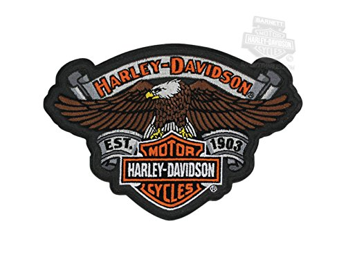 Harley-Davidson Eagle Relic with B&S Patch