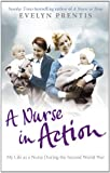 img - for A Nurse in Action book / textbook / text book