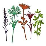 Sizzix 664164 Wildflower Stems #2 Dies One Size Multicolor (Color: Multicolor, Tamaño: One Size)