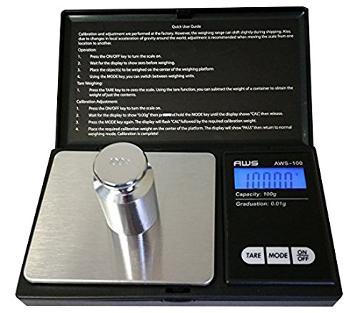 American-Weigh-Scales-100G-X-001G-Digital-Scale-With-Seaside-100-G-Stainless-Steel-Calibration-Weight
