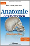 img - for Anatomie des Menschen book / textbook / text book