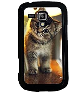 Printvisa Kitten On A Shelf Back Case Cover for Samsung Galaxy S Duos 2 S7582