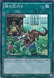 隣の芝刈り スーパーレア 遊戯王 レイジング・テンペスト rate-jp066
