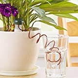 Automatic Flower Plant Watering System Water Drip Irrigation Dropper Garden Tool
