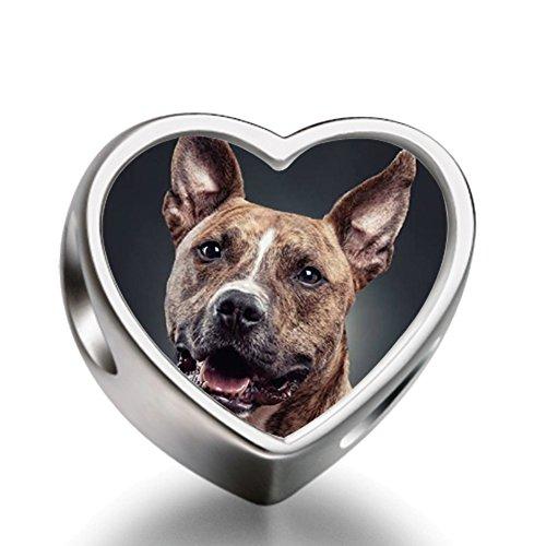 rarelove-sterling-silver-a-hungry-dog-animal-heart-photo-european-charm-bead