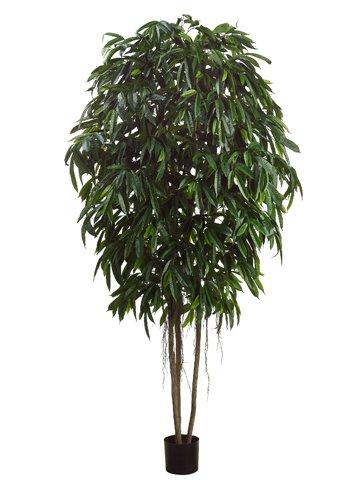 Silk Plants Direct Longifolia Tree (Pack of 1) jacquard green label silk colors cyan [pack of 3 ]