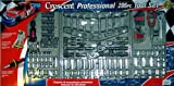 206 Piece Crescent Wrench Professional Mechanics Socket Wratchet Tool Set