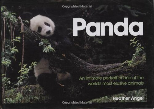 Panda: An Intimate Portrait Of One Of The World's Most Elusive Characters, Heather Angel