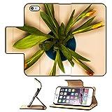 MSD Premium Apple iPhone 6 Plus iPhone 6S Plus Flip Pu Leather Wallet Case IMAGE ID 35382118 top view bouquet of orange tulips in vase isolated