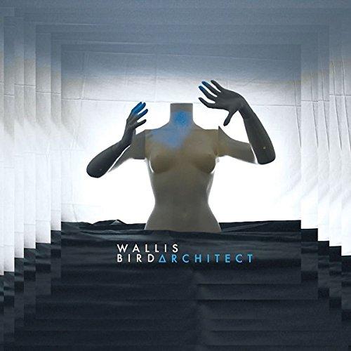 Architect (2lp+2cd Deluxe Edt.180gr)