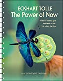img - for The Power of Now 2016 Engagement Calendar book / textbook / text book