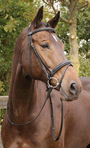 Harry's Horse Kombinierte Trense Luxe schwarz