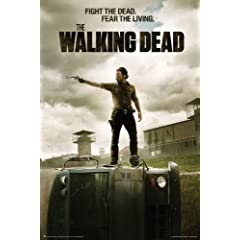 The Walking Dead Collage TV Poster
