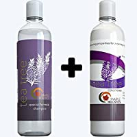 Tea Tree Oil Shampoo And Hair Conditioner Set - Natural Anti Dandruff Treatment For Dry And Damaged Hair - Best...
