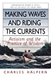 img - for Making Waves and Riding the Currents: Activism and the Practice of Wisdom (BK Currents (Hardcover)) book / textbook / text book