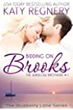 Bidding on Brooks: The Winslow Brothers #1 (The Blueberry Lane Series -The Winslow Brothers)