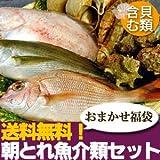 【山陰沖産】旬の朝とれ魚介類セット(貝類含む)【風】 産地直送の海鮮福袋!