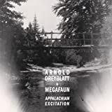 Appalachian Excitation Arnold Dreyblatt and Megafaun