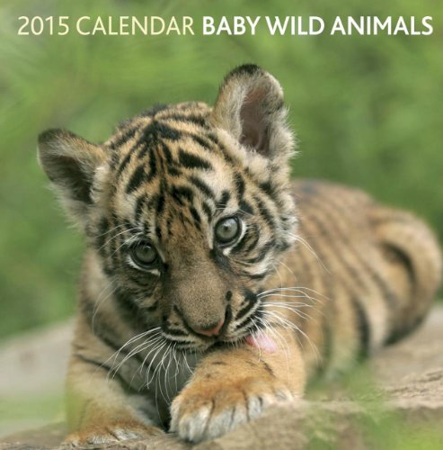 2015 Calendar: Baby Wild Animals: 12-Month Calendar Featuring Wonderful Photography and Space in Write in Key Events