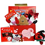 Puppy Love Care Package Chocolate and Candy Gift Box - Valentines Day