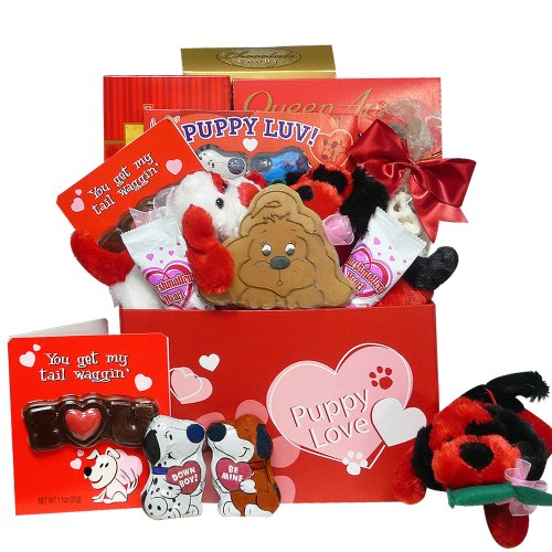 Puppy Love Care Package Chocolate and Candy Gift Box – Valentine's Day