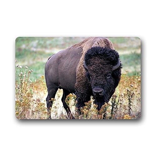 Heymats Water Buffalo Doormat Outdoors/Indoor Machine Washable Home Floor Mats Rugs 23.6 x 15.7 Inches