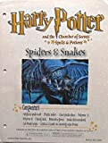 HARRY POTTER HOGWARTS SPELLS AND POTIONS CHAMBER OF SECRETS SPIDERS AND SNAKES CLINGY CREATURES, SPIDER WEB, AND MAGIC TRICK SNAKE SKIN WINDSOCK ACTIVITY SCIENCE KIT