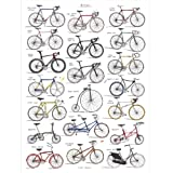 Bicycle Chart Print||RHFPR