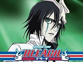 Bleach: Season 6