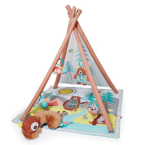 Skip-Hop-Camping-Cubs-Activity-Gym-BabyInfant-Multi